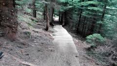Rilsk_Ezera_Red_DH_Bike_Track_10